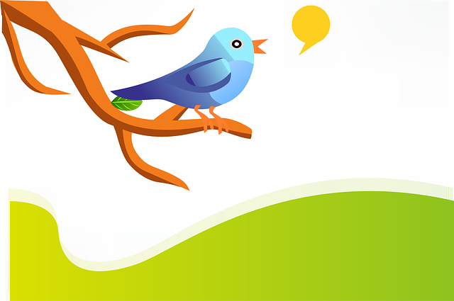 5 reasons why non-profits should use Twitter