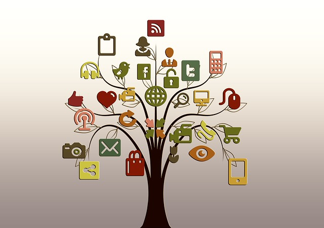 What social media platforms non profits should consider